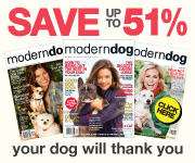 Subscribe to Modern Dog magazine!