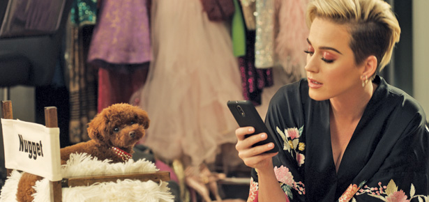 Meet Katy Perrys Dog Nugget Modern Dog Magazine