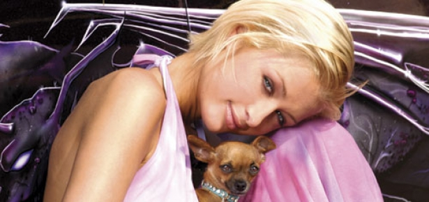 Paris Hilton S Beloved Dog Tinkerbell Dies At 14 Modern