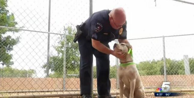 The good news hero cop rescues dog twice modern dog for Gary carter vet