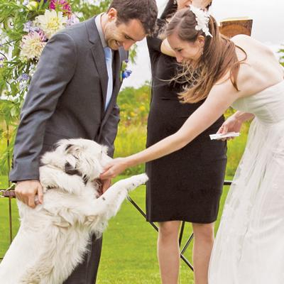 Adorable Wedding Ideas Modern Dog magazine