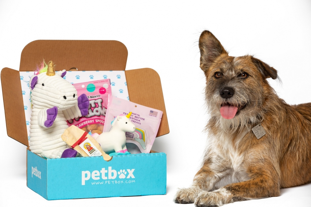Petbox subscription dog boxes with toys and treats