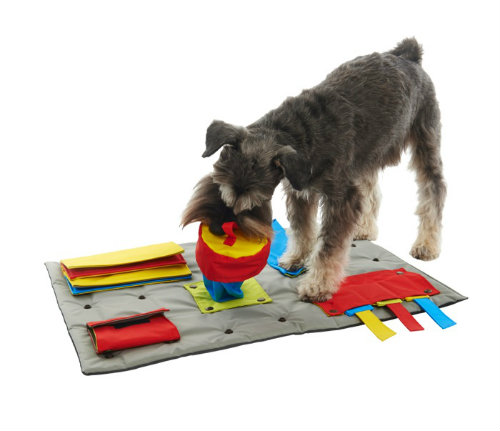 The BUSTER ActivityMat Is A Problem Solving Interactive