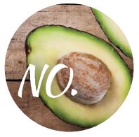 Avocado can harm our dog and should be left out of our dog's diet.