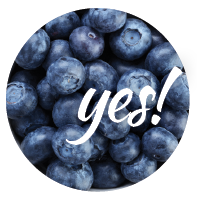Blueberries are good for our dog and could be included in its diet.