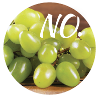 grapes and raisins are toxic for dogs.