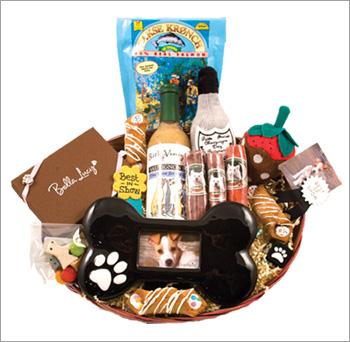 Win Free Stuff!! | Modern Dog magazine