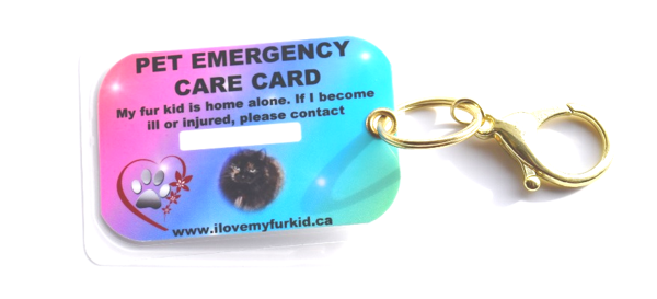 Pet emergency care card keychain for pets home alone