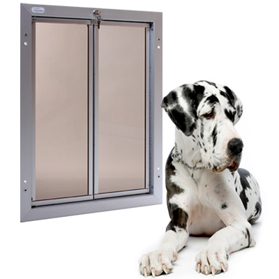 Extra Large Dog Extra Large Dog Door Modern Dog Magazine