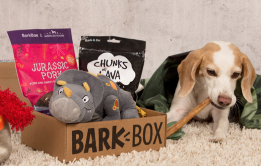 Barkbox dog gift subscription with treats, toys and delivered to your home