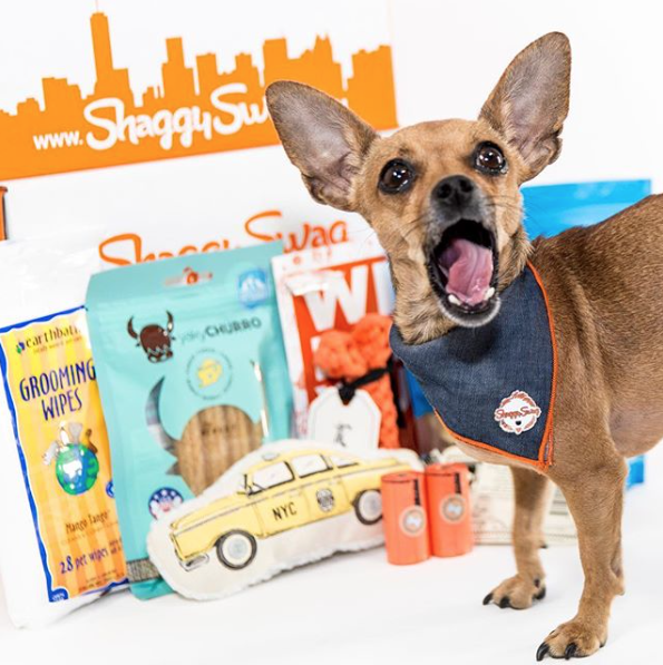 ShaggySwag delivered dog packages