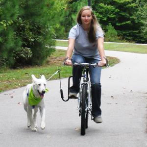 Safe Cycling With A Dog Modern Dog Magazine
