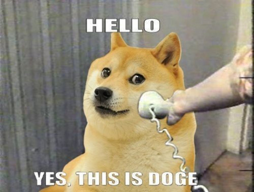 http://moderndogmagazine.com/sites/default/files/images/uploads/ThisisDoge.jpg