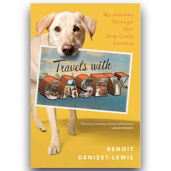 12 Books For Dog Lovers To Read This Summer | Modern Dog magazine