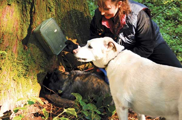 Image result for Geocaching With Dogs wikipedia