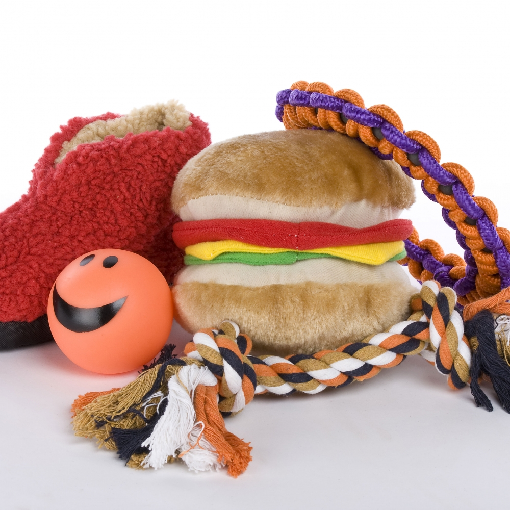 new and fun toys for dogs that will excite your pup
