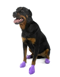 Pawz Natural Rubber Dog Boots Modern Dog Magazine - Dog shoes for hardwood floors