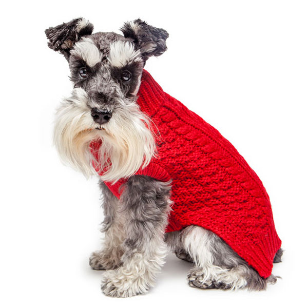 Dog Sweaters So Cute Youll Want To Wear Them Modern Dog Magazine