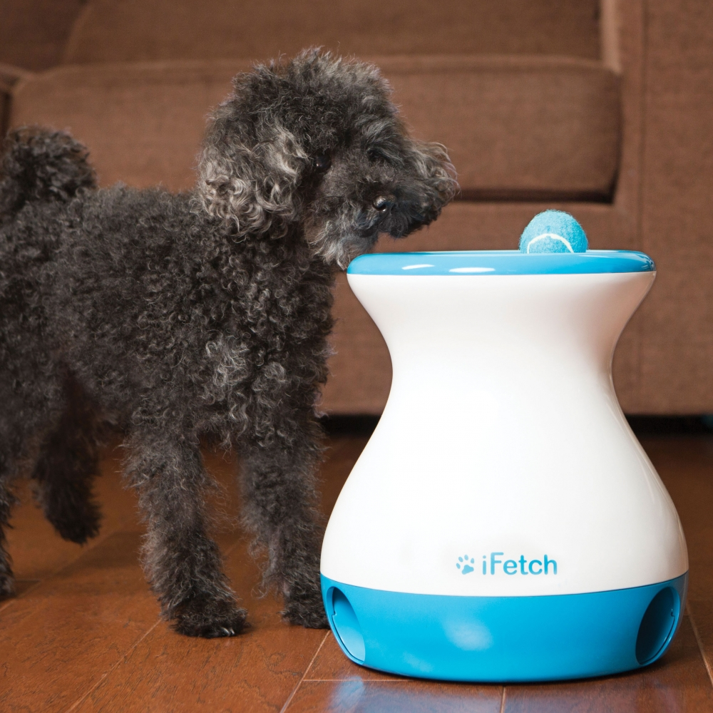 ifetch toy for automatic fetching dog balls