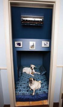 At Home With Jessica Alba Modern Dog Magazine