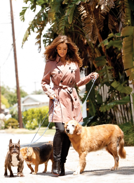 Photo of Denise Richards & her Dog Lucy, Hank & Tina
