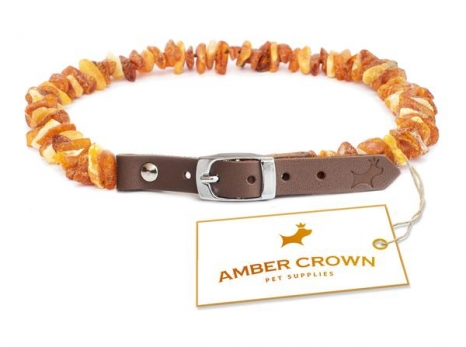 Amber Crown Flea Collar