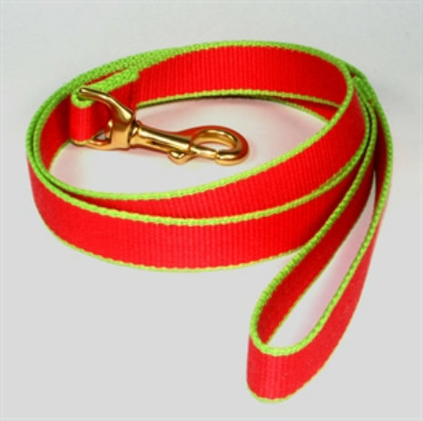 Eco-Friendly Dog Leash