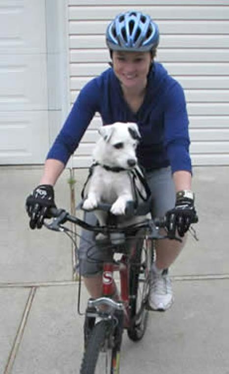 Buddy Rider Modern Dog Magazine