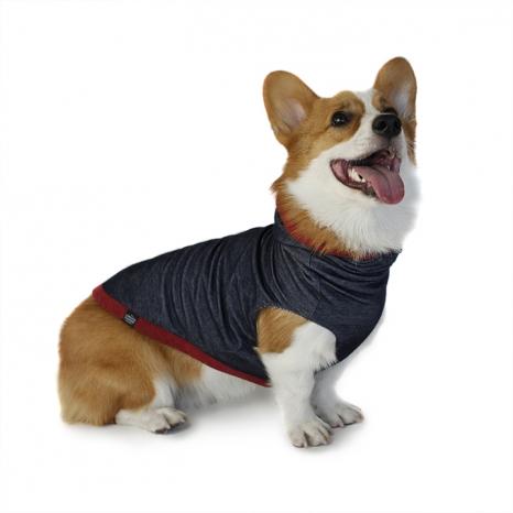 Long Dog Clothing Hoodie