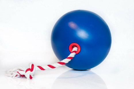 Image of Tuggo dog toy, a one-of-a-kind tug-of-war toy for dogs