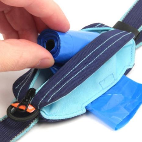 modern leash