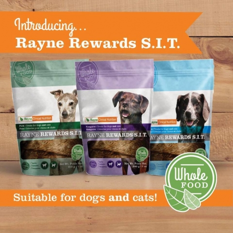 Rayne Rewards S.I.T