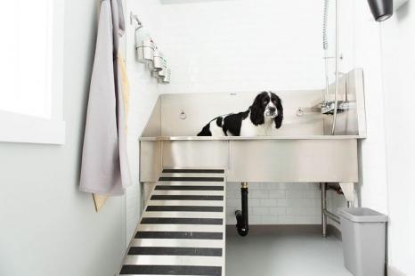 Ridalco Dog Tub