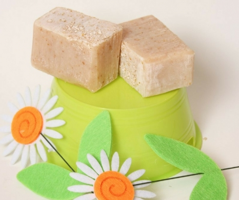 Oatmeal Neem Dog Shampoo by Sunsational Soaps & Lotions