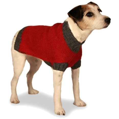 alpaca dog sweater