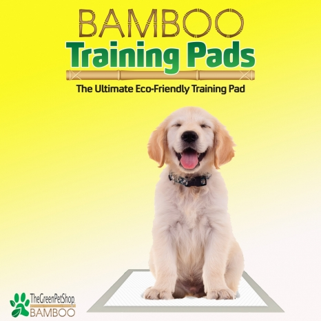 Bamboo Training Pads