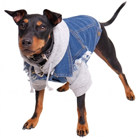 Pethaus Denim Dog Vest Raw Blue - Unpatched