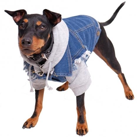 Pethaus Denim Dog Vest Raw Blue - Unpatched