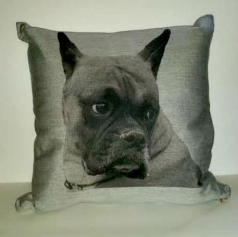 Cristions Pet Pillow