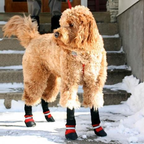 Fleece Lined Muttluks Dog Boots