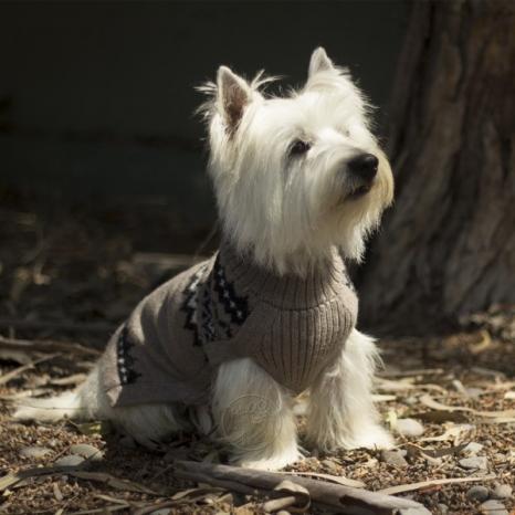 Alqo Wasi Alpaca blend sweater