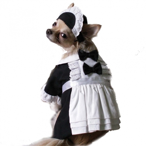 Adorable French Maid Dog Costume
