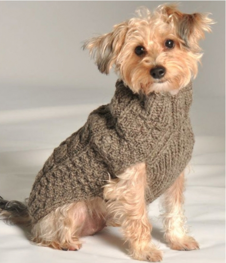 Cute Cable Knit Sweater