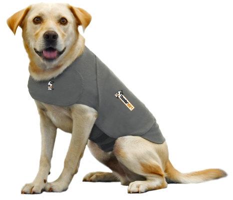 Modern Dog Fave Find Thundershirt
