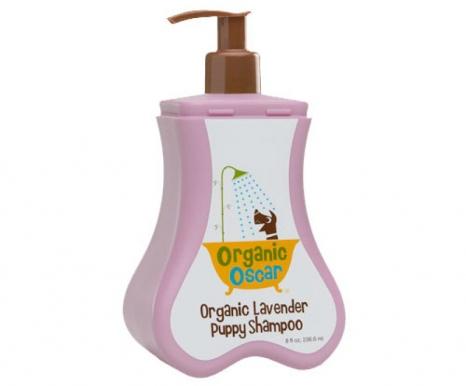Organic Lavender Organic Oscar Organic Lavender