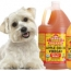 Apple Cider Vinegar Can Help Your Dog