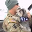 Dogs Greeting Soldiers