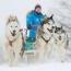 WinterActivies-Thumbnail