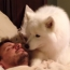 Adorable Dog Wakes Dad Up