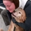 Soldier Reunites With Her Dog